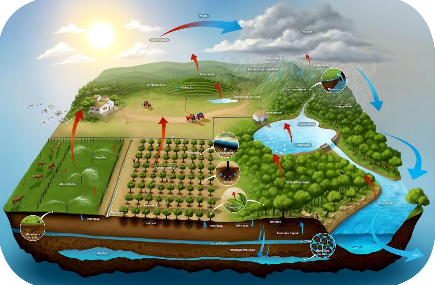 2. O ciclo hidrológico e a agricultura irrigada