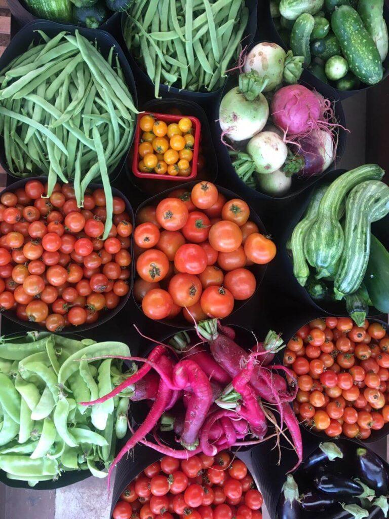 mix de hortaliças inusitadas distribuídas aos clientes